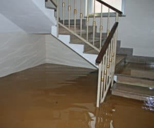If you experience flooding in your home or place of business, the fastest and most reliable way to get back to normal is through contracting certified water damage restoration technicians