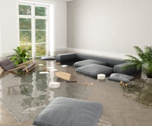 Water damage can be overwhelming to deal with. Sarkinen's Water Restoration team is here to help get life back to normal.